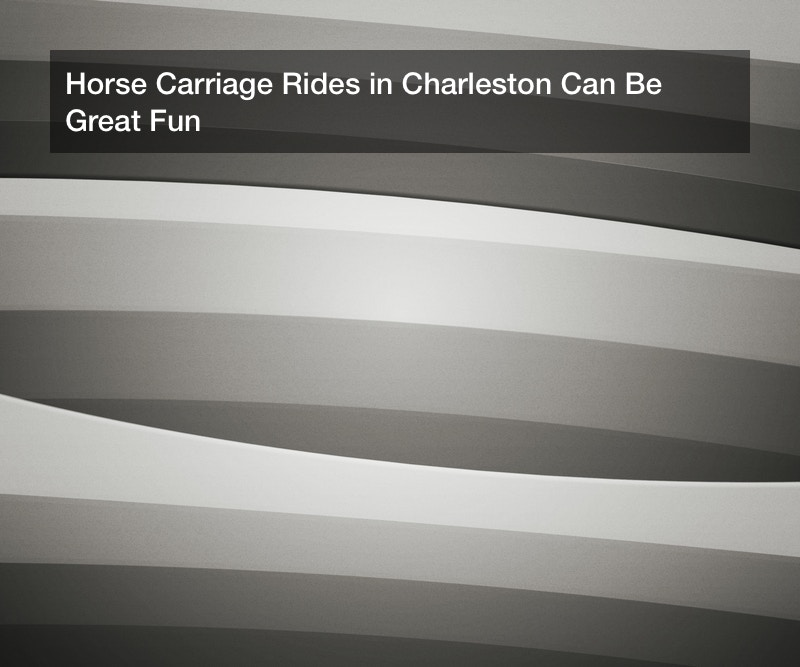 Horse Carriage Rides in Charleston Can Be Great Fun
